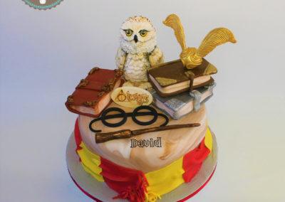 gâteau adulte jade cake harry potter(87)