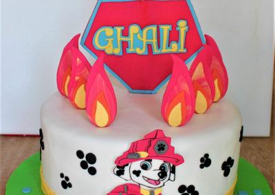 gâteau anniversaire fête garçon jade cake (154)
