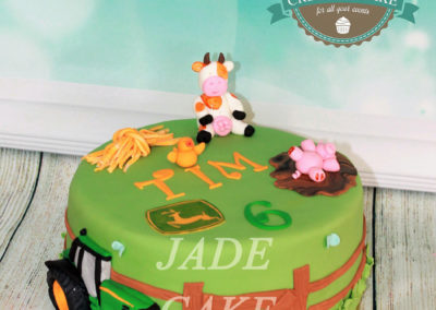 gâteau anniversaire fête garçon jade cake (85)